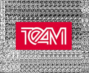 Logo TEAM GmbH