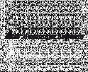 Logo HS - Hamburger Software GmbH