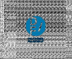 Logo Deutscher Frauenrat e.V. (DF)